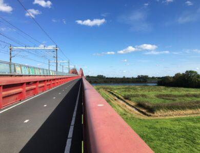 NS-Wandeling Wezepsche Heide